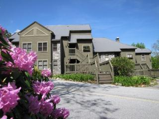 Eagle Ridge Sunsets 9 - Sapphire vacation rentals