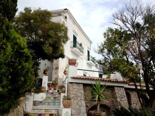 Apartment free wi-fi in Exclusive Villa - Barano d'Ischia vacation rentals