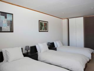 3-bed room in ski-in ski-out l - Nozawaonsen-mura vacation rentals
