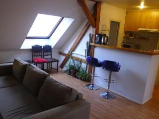 Appartement  confortable avec  2 chambres - Strasbourg vacation rentals