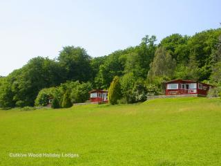 'Woodpecker Lodge' at Cutkive Wood - Liskeard vacation rentals