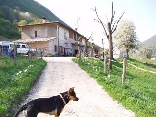 GARGNANO FRAZIONE COSTASTUDIO APT EFFI 1ST FLOOR - Gargnano vacation rentals