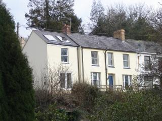Gwynfryn - Newcastle Emlyn vacation rentals