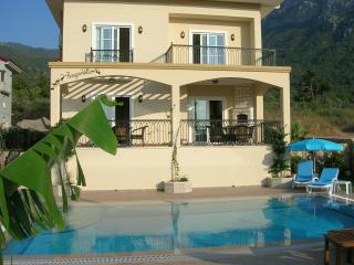 Superb Villa Private Pool WiFi and Free Transfer - Oludeniz vacation rentals