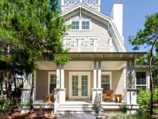 45 Founders Court - Watercolor vacation rentals
