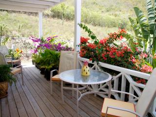 Garden Apartment 4 - Jolly Harbour vacation rentals