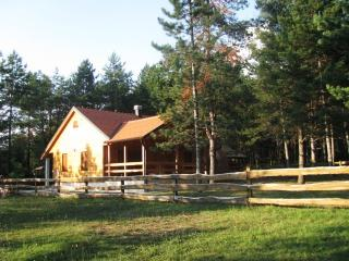 Plitvice Nature Inspired - Alexandar Cottage - Plitvice Lakes National Park vacation rentals