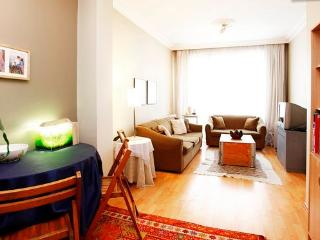 local cozy close to Taksim Istanbul - Istanbul vacation rentals