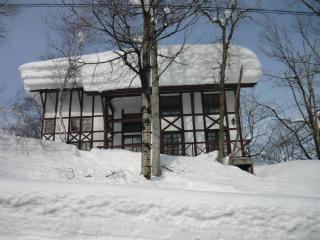 Chalet Myoko - Niigata Prefecture vacation rentals