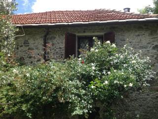 CASALE MURIALDO - Savona vacation rentals