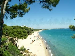 ENJOY APPARTMENT NEAR BEACH - Miami Platja vacation rentals