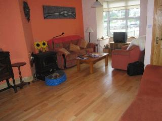 Town House,3 Bed. sleeps 5.-100 Metre to Killarney - Killarney vacation rentals