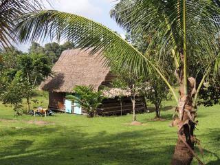gîte moutouchiguyane - Roura vacation rentals