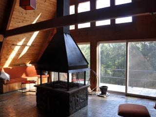 Thaddeus House 3BR - Secluded Catskills Retreat - Phoenicia vacation rentals