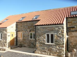 Forget-Me-Not - Robin Hoods Bay vacation rentals