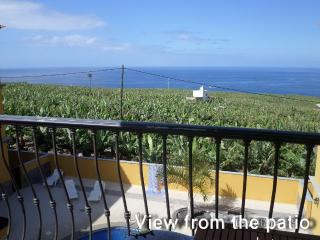 Ocean View Apartment - Tazacorte vacation rentals