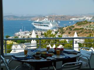Elegant house with sea view - Bodrum Peninsula vacation rentals