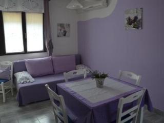 Apartment Vanjica - Sutivan vacation rentals