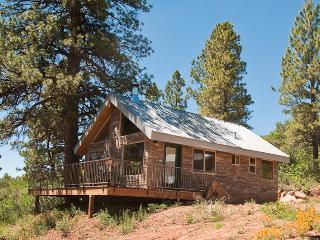 Mountain Escape Cabin - Moab vacation rentals