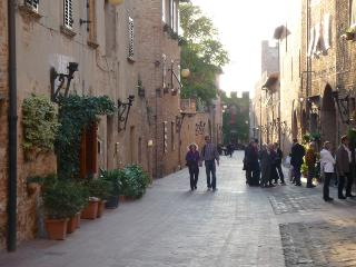 Charming house medieval town - Certaldo vacation rentals