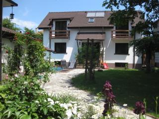 LaDespani - Brasov vacation rentals