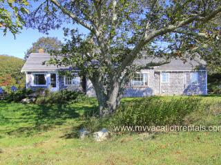 WHITP - 2 week minimum stay, Pristine Hilltop Ocean View, 1.2 Miles to Lucy Vincent Beach, Long Term Summer Rental - Martha's Vineyard vacation rentals