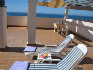 Penthouse with sea views WIFI - Marbella vacation rentals