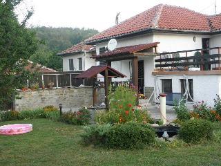 Villa Kalin - three bedroom house with garden - Veliko Turnovo vacation rentals
