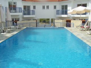 Apartment with Jacuzzi  Argaka - Argaka vacation rentals