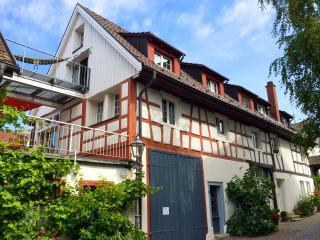3 Bedroom Cozy Historic Farmhouse, Lake Constance - Reichenau vacation rentals