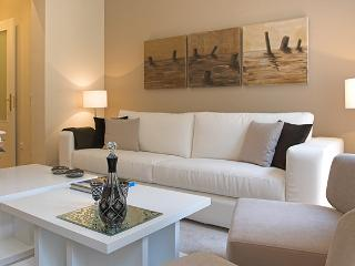 Leon I - Madrid vacation rentals