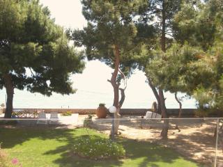 WATERFRONT LUXURY VILLA - Agioi Theodoroi vacation rentals