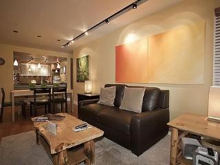 Amazing Ski-In/Ski-Out 1BD! 6/1-6/18 $119/nt rate - Breckenridge vacation rentals