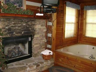 Cedar Cove - Townsend vacation rentals