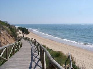 Sunflowers - Province of Huelva vacation rentals