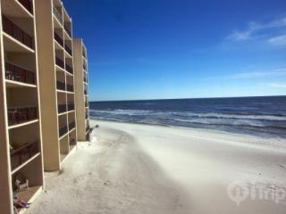 Stylish Beachfront Condo with Phenomenal Scenery and Pool - Inlet Beach vacation rentals
