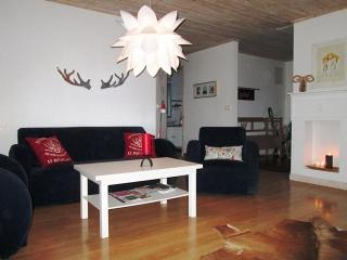 Beautiful cabin with a  fantastic mount view - Borgarnes vacation rentals