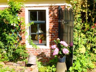 Romantic house at countryside - Winsum vacation rentals
