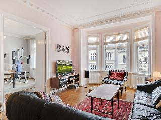 Nice Copenhagen apartment close to Parken Stadium - Copenhagen vacation rentals