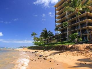 **PRIME WEST MAUI oceanfront 2bed/2bath condo** - Lahaina vacation rentals