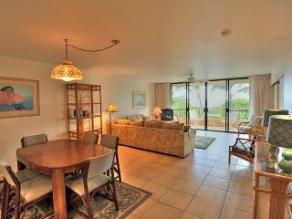 Paki Maui #325 - Lahaina vacation rentals