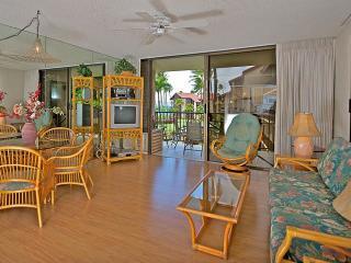 Papakea #D309 - Lahaina vacation rentals