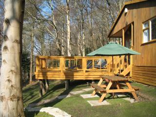 Bluebell Cottage - Betws-y-Coed vacation rentals