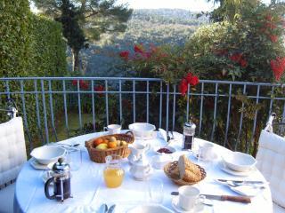 La Pinede - Vence vacation rentals