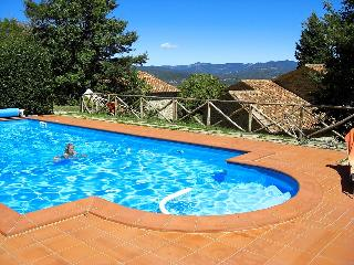 Tuscany 5 bedroom farmhouse with pool - BFY1315 - Caprese Michelangelo vacation rentals