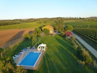 I MORI GELSI - Torgiano vacation rentals