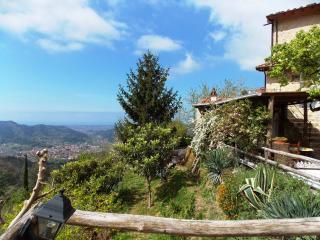 Casa Sissi - Camaiore vacation rentals