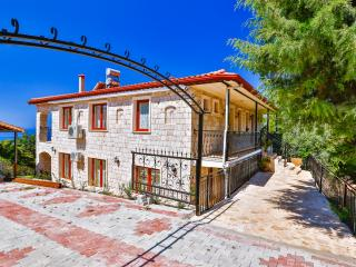New villa in village, 5 minutes drive from charming town of Kas. - Kas vacation rentals