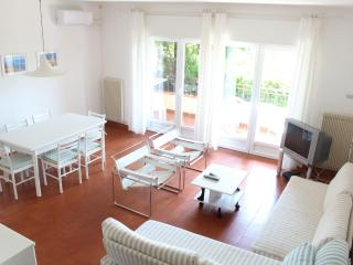 Fully air condition flat , WIFI and swimming pool - Lake Garda vacation rentals
