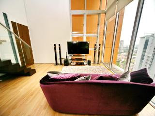 3 Bedroom Loft Orchard Newton - Singapore vacation rentals